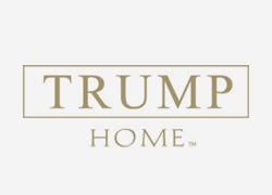 Trump Home colchones